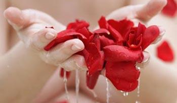 применение розовой воды для волос