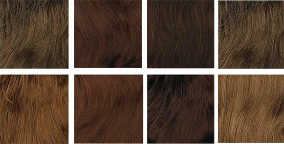 цвет волос для осеннего цветотипа