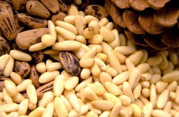 масло кедрового ореха для волос