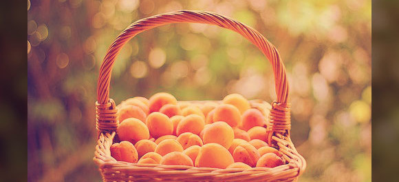 абрикосовое масло дл волос