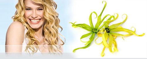 масло иланг иланг для роста волос
