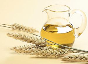 масло зеродышей пшеницы для роста ресниц
