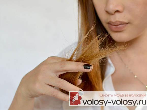 Почему секутся кончики волос?