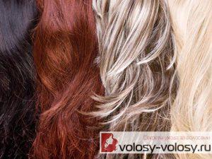 Уход за разными типами волос. ТОП-5 проблем волос.
